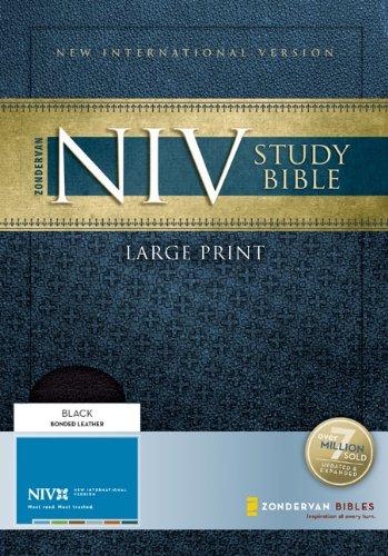 9780310939252: Study Bible-NIV-Large Print: Large Print Edition