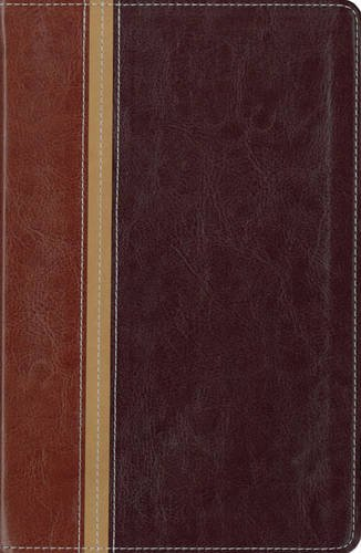 9780310939849: NIV, The Message, Parallel Study Bible, Personal Size, Imitation Leather, Brown/Red: Updated Numbered Edition