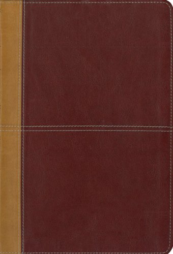 9780310940821: KJV/Amplified Parallel Bible, Large Print