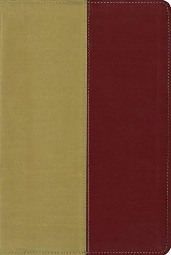 9780310940838: KJV, Amplified, Parallel Bible, Imitation Leather, Yellow/Red