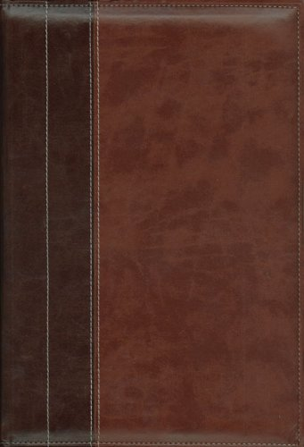 NIV Archaeological Study Bible, Large Print: An Illustrated Walk Through Biblical History and ...