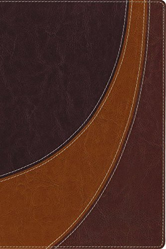 9780310941255: NIV, The Case for Christ Study Bible, Imitation Leather, Brown: Investigating the Evidence for Belief