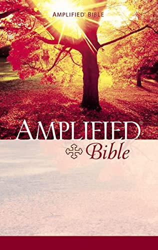 9780310951414: The Amplified Bible/Containing the Amplified Old Testament and the Amplified New Testament
