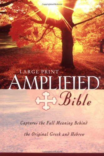 9780310951728: Large Print Bible-AM
