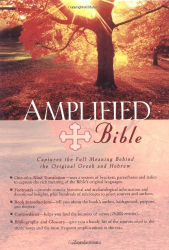 9780310951735: Amplified Bible-AM