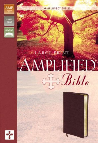 9780310951834: Amplified Large Print Bible-AM