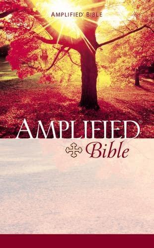 9780310951858: Amplified Bible Mass Market