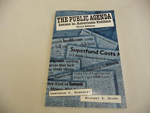 9780312020125: Public Agenda Issues in American Politics