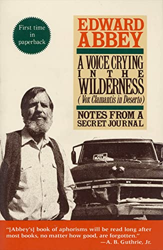9780312064884: A Voice Crying in the Wilderness (Vox Clamantis in Deserto): Notes from a Secret Journal