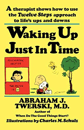 9780312132071: Waking up Just in Time: A Therapist Shows How to use the Twelve Steps Approach to Life's Ups and Downs