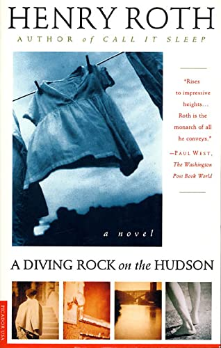 9780312140854: A Diving Rock on the Hudson: A Novel (Mercy of a Rude Stream)