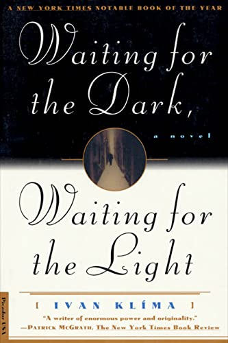 9780312140922: Waiting for the Dark, Waiting for the Light: A Novel