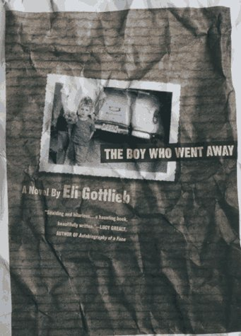 9780312150709: The Boy Who Went Away