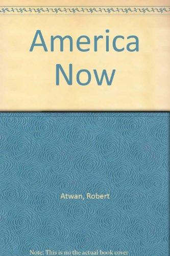 9780312152505: America Now