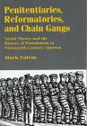 9780312173272: Penitentiaries, Reformatories and Chain Gangs: Social Theory and the History of Punishment in Nineteenth Century America
