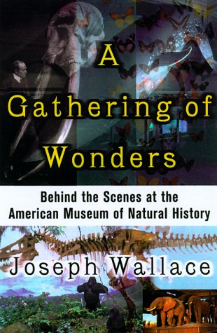 9780312252212: A Gathering of Wonders
