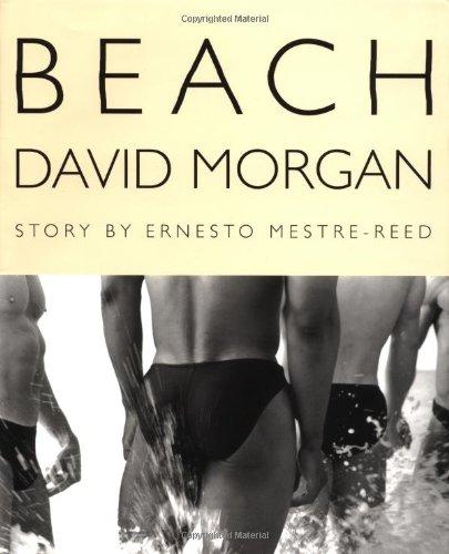9780312265588: Beach