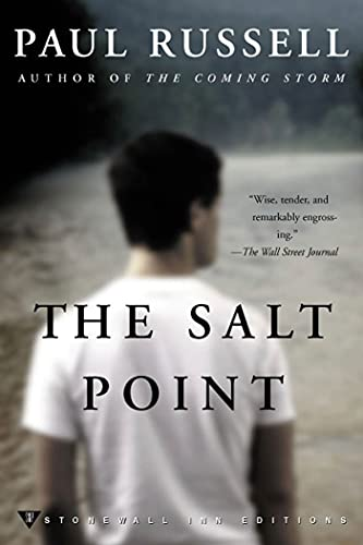 9780312267698: The Salt Point (Stonewall Inn Editions)