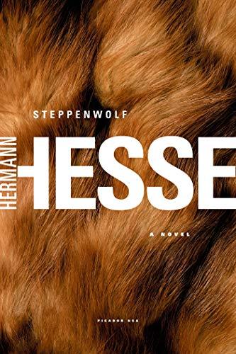 9780312278670: Steppenwolf