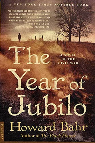 9780312280697: The Year of Jubilo: A Novel of the Civil War