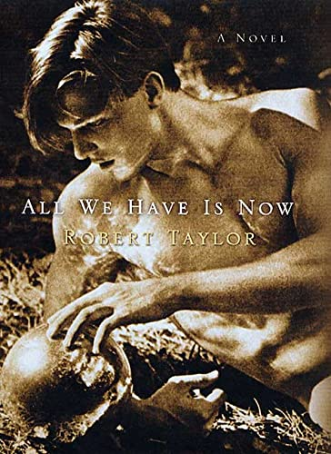 9780312284817: All We Have Is Now: A Novel