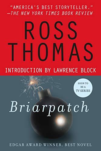 9780312290313: Briarpatch