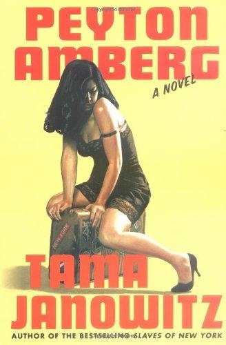 9780312318444: Peyton Amberg: A Novel