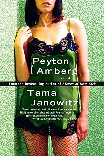 9780312318451: Peyton Amberg: A Novel