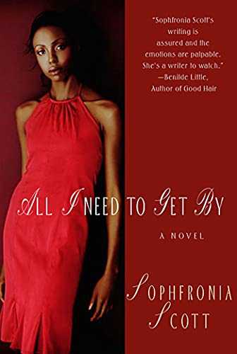 9780312318567: All I Need to Get By: A Novel
