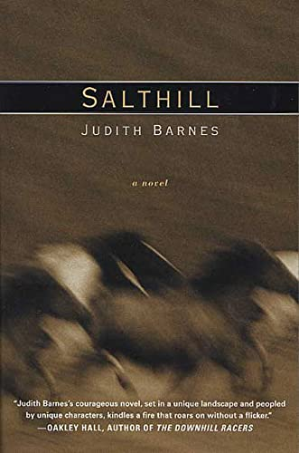 9780312320157: Salthill: A Novel