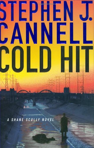 9780312347307: Cold Hit (Shane Scully Novels)