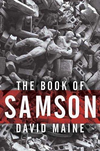9780312353391: The Book of Samson
