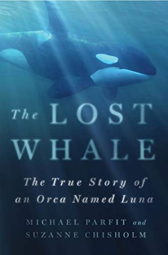 9780312353643: The Lost Whale: The True Story of an Orca Named Luna