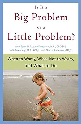 9780312354121: Is It a Big Problem or a Little Problem?: When to Worry, When Not to Worry, and What to Do
