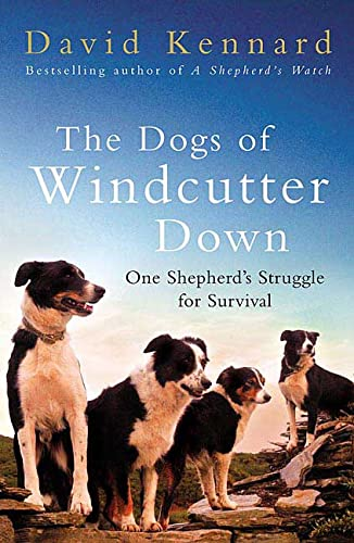 9780312362003: The Dogs of Windcutter Down: One Shepherd's Struggle for Survival