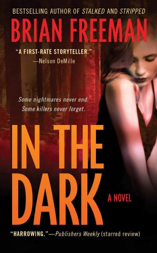 9780312363321: In the Dark: A Novel (Jonathan Stride)