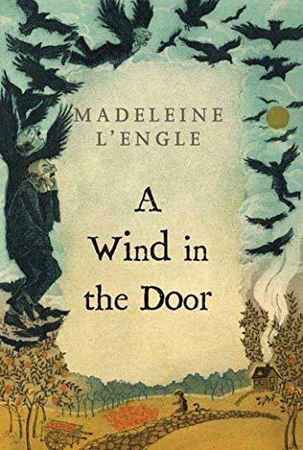 9780312368548: A Wind in the Door