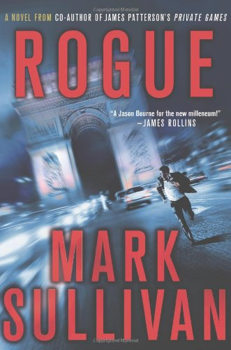 9780312378516: Rogue (Robin Monarch Thrillers)