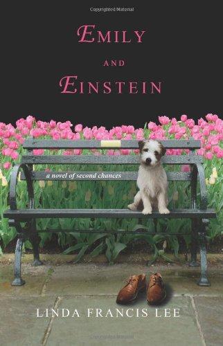 9780312382186: Emily & Einstein: A Novel of Second Chances