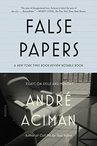 9780312420055: False Papers