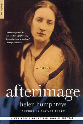 9780312420642: Afterimage: A Novel