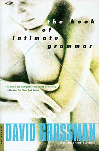 9780312420956: The Book of Intimate Grammar: A Novel