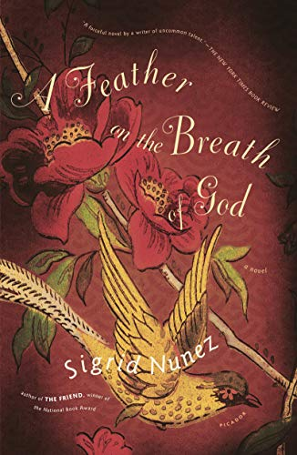 9780312422738: A Feather on the Breath of God: A Novel