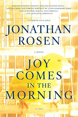 9780312424275: Joy Comes in the Morning: A Novel