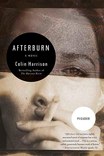 9780312426996: Afterburn: A Novel