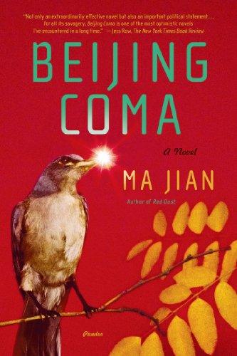 9780312428365: Beijing Coma: A Novel