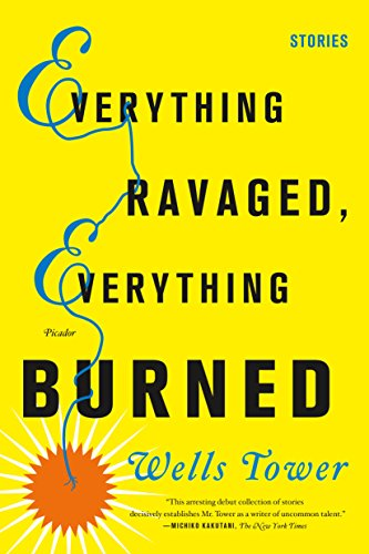 9780312429294: Everything Ravaged, Everything Burned: Stories