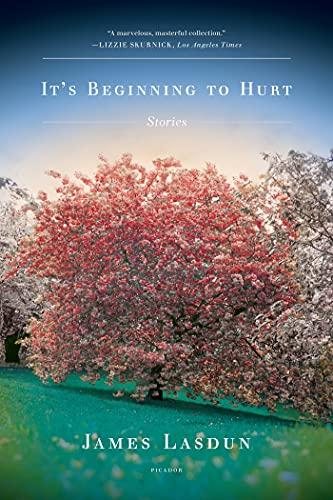 9780312429867: It's Beginning to Hurt