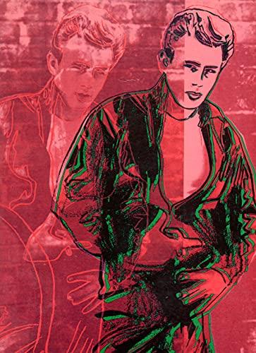 9780312439583: James Dean: American Icon