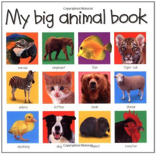 9780312490836: My Big Animal Book (My Big Board Books)